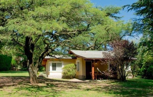 Cabaña Algarrobo